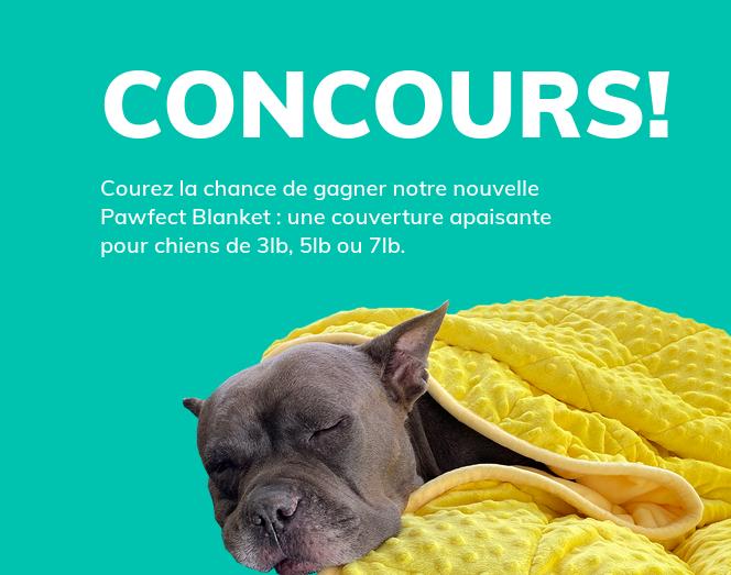 Concours Gagnez notre Nouvelle Pawfect Blanket : une Couverture Apaisante pour Chiens