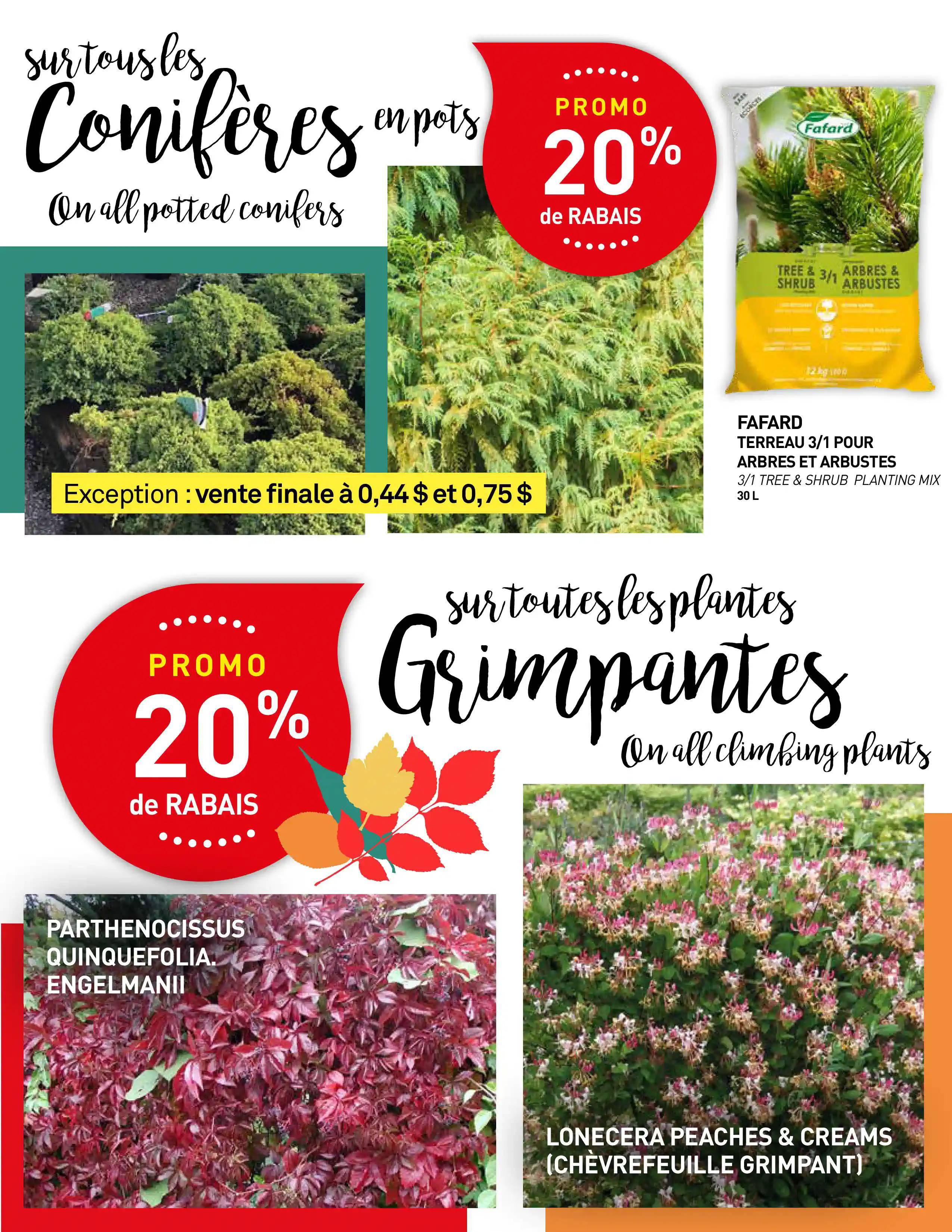 Circulaire Centre de Jardin Brossard du  9 au 22 septembre 2021 - Page 3