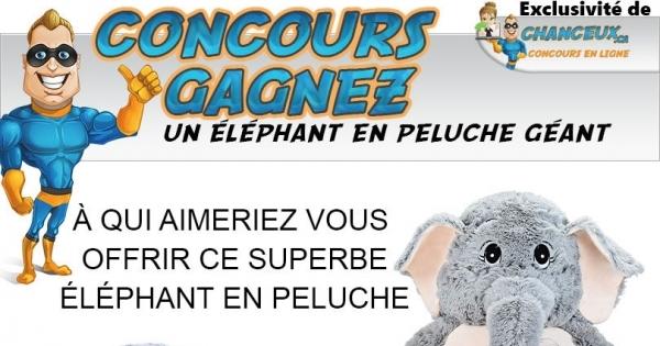 Concours Éléphant Géant en Peluche