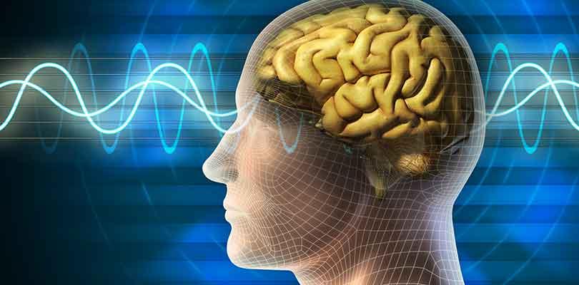 10 Astuces pour Optimiser le Fonctionnement de votre Cerveau