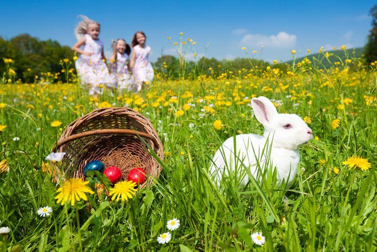 10 Endroits au Québec pour la Chasse aux Oeufs de Pâques