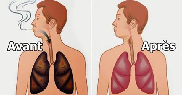 3 Aliments Magiques qui Peuvent Nettoyer les Poumons des Fumeurs !