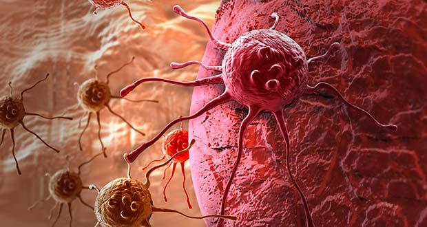 4 Aliments qui Détruisent les Cellules Cancéreuses