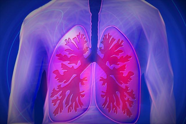5 Meilleurs Aliments pour Nettoyer vos Poumons