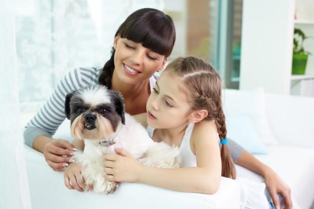 5 Règles pour Éviter les Conflits avec Votre Enfant