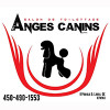 Toilettage ANGES CANINS