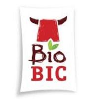 Logo BioBic