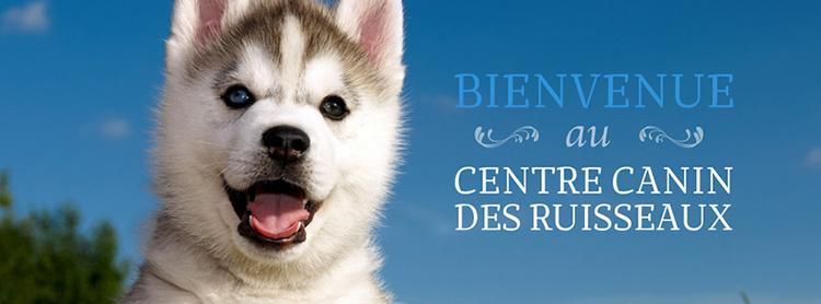 Centre Canin Des Ruisseaux