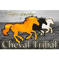 Centre Équestre Cheval Tribal Saint-Onésime