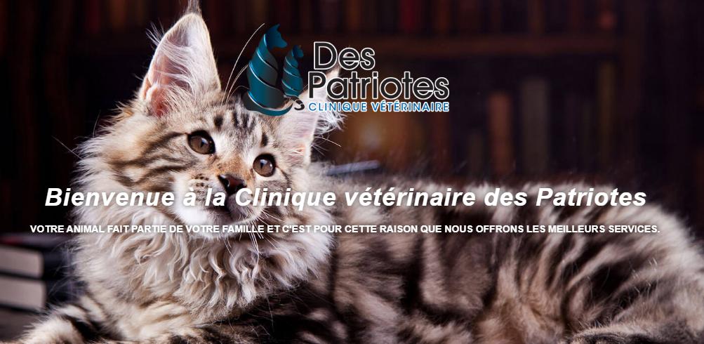 Clinique Vétérinaire des Patriotes en Ligne