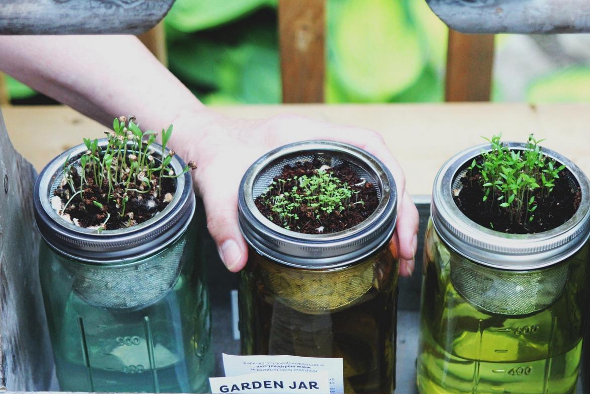 Comment Faire un Ingénieux (petit) Jardin Urbain en 5 Étapes Faciles