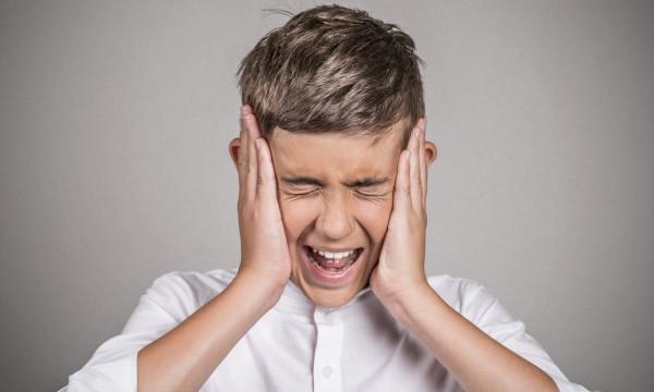 Comprendre et Traiter les Crises de Panique et les Phobies
