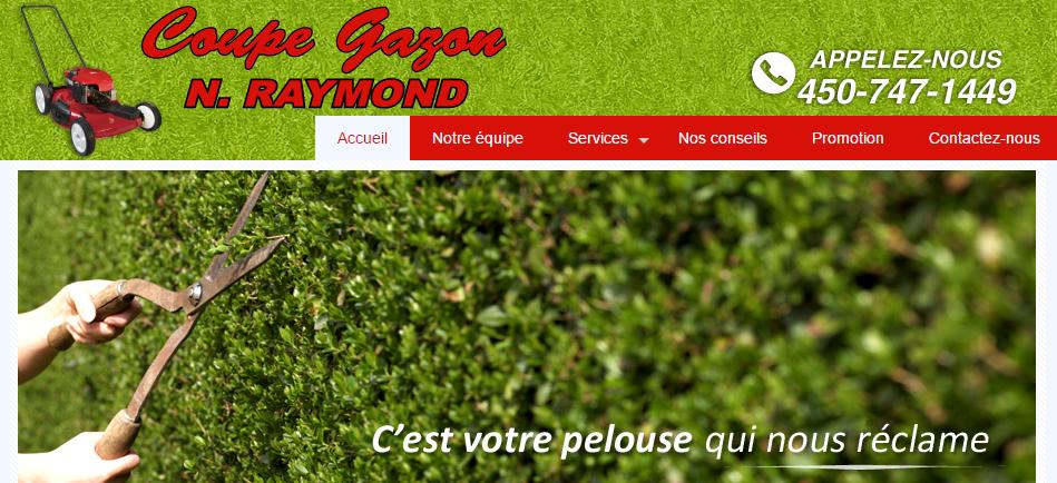 Coupe Gazon N.Raymond en Ligne