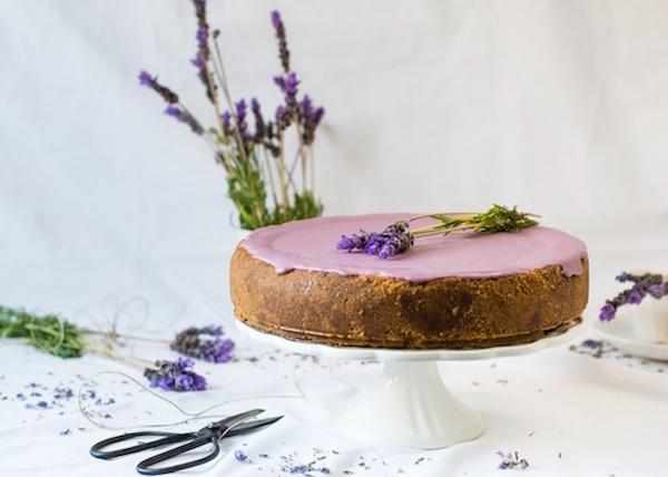 Gâteau au Fromage au Chocolat Blanc et Lavande