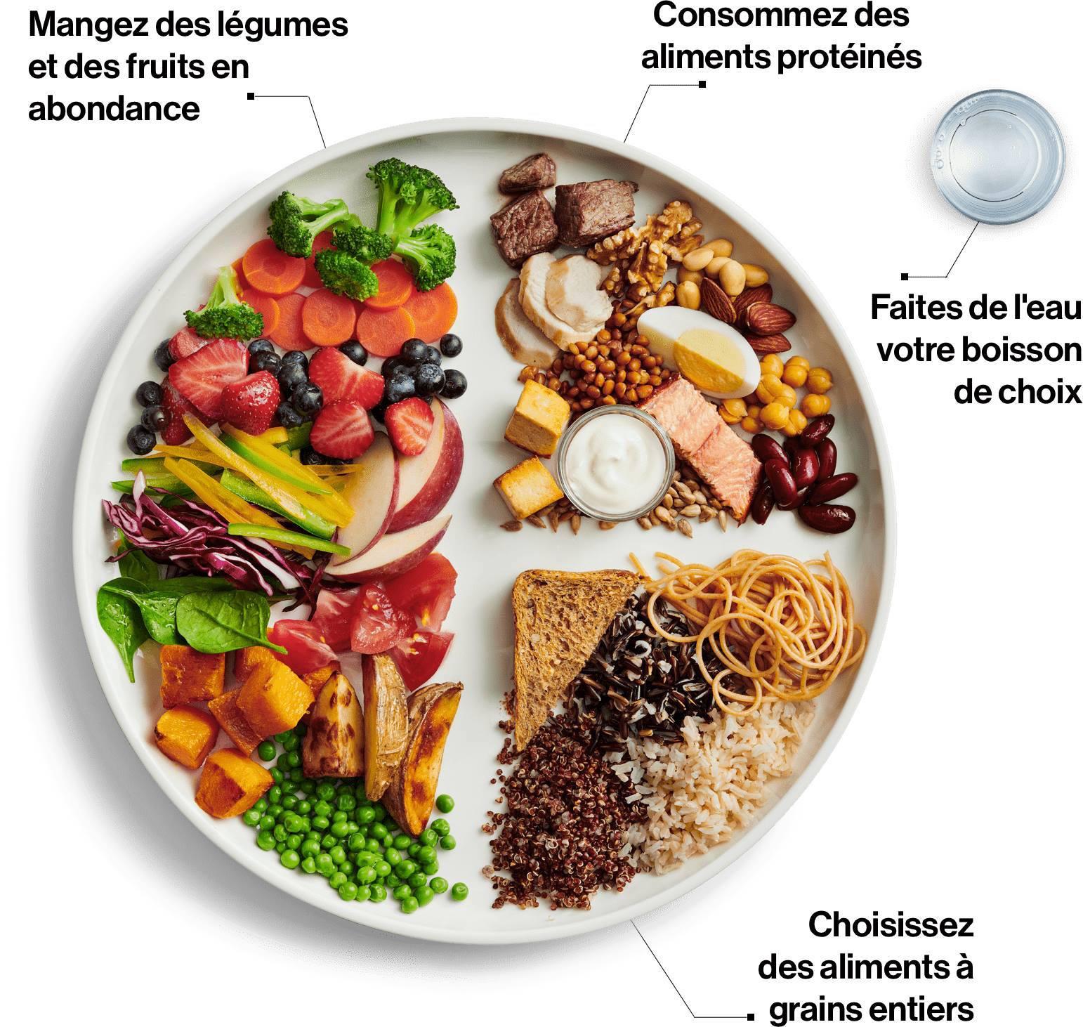 Guide Alimentaire 2019 : Santé Canada en Route Vers le Futur