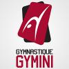 Gymnastique Gymini