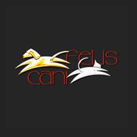 Hôpital Vétérinaire Cani-Felis Inc. Longueuil 5720 Grande Allée