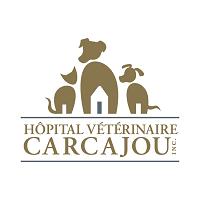 Hôpital Vétérinaire Carcajou Alma 200 Avenue du Pont S
