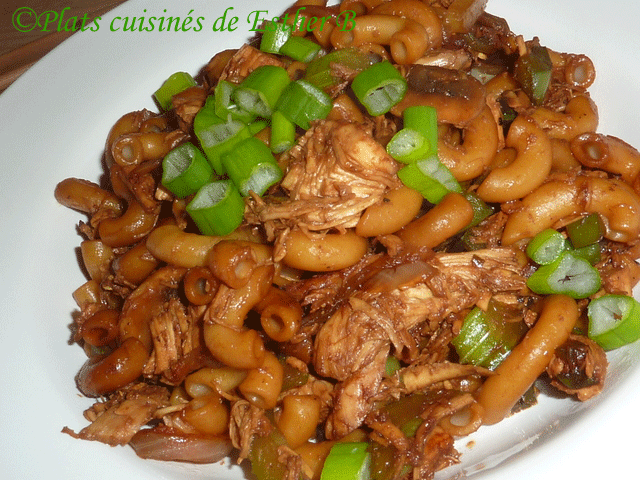 Macaroni Chinois au Poulet