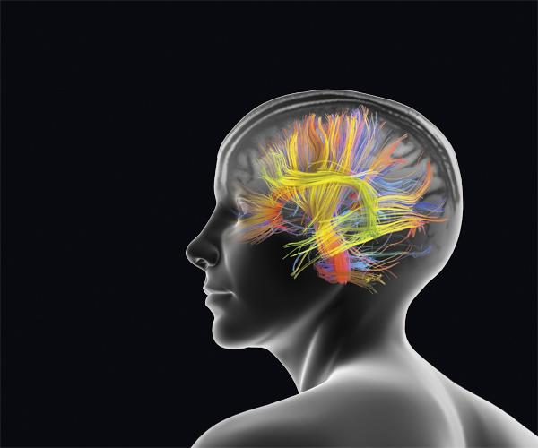 Marcher Rend le Cerveau Plus Créatif et Plus Heureux