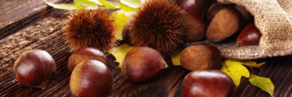Marron et Châtaigne, qui est Comestible, qui est Toxique ?