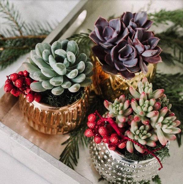 Noël 5 Cadeaux de Dernière Minute
