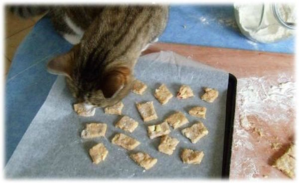 Biscuits pour Chaton