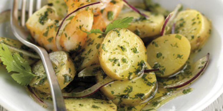 Photo Recette Salade de Ratte aux Gambas, à la Coriandre et à L'oignon Rouge