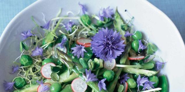 Salade Fraîcheur à la Fleur de Bleuet