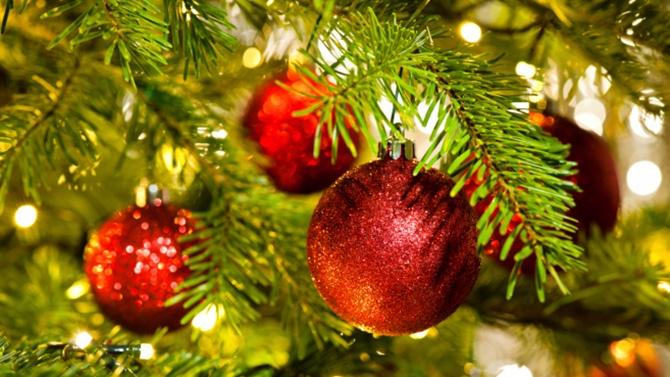 Sapin de Noël : Histoire et Origine