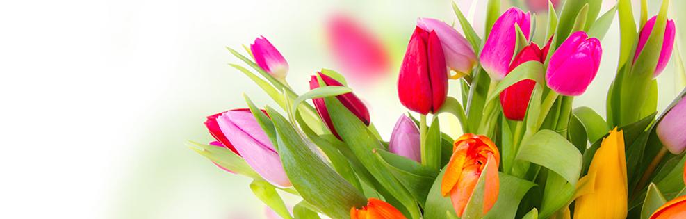 Un Cadeau tout en Fleurs… pour Pâques