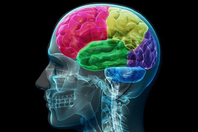Une Étude Prouve que CECI est L'élément qui Déclenche la Maladie d'Alzheimer…