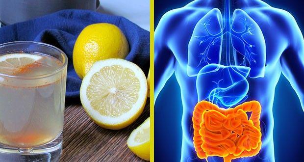 Voici Comment Éliminer des Kilos de Toxines et Déchets de votre Organisme