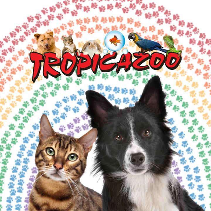 Annuaire Tropicazoo
