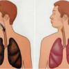 6 Aliments Extraordinaires qui Peuvent Purifier les Poumons D'un Fumeurr