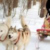 7 activités hivernales que votre famille va adorer