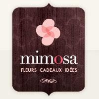 Mimosa Fleurs en Ligne