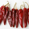 Piment Guajillo