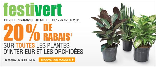 20% de Rabais sur les plantes d'intérieur et les orchidées