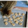 Circulaire Recette Biscuits pour Chaton